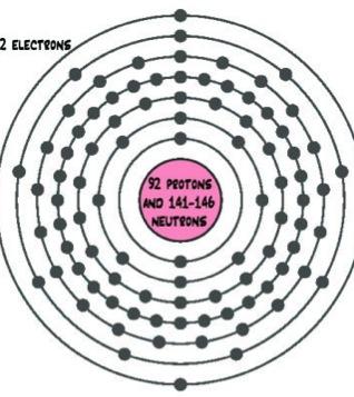 bohr diagram for mercury